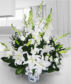 Arrangement White